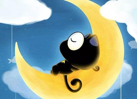 月亮之上UP猫