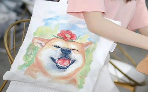 定做logo帆布袋要多少钱,创意帆布袋diy报价