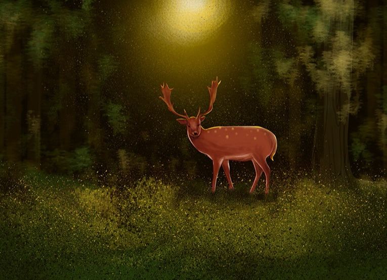 治愈系-森林与鹿